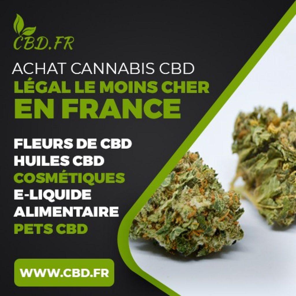 CBD.fr : site pour acheter du CBD légal en France
