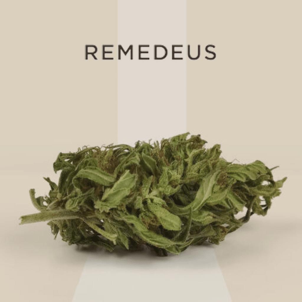 Fleur de chanvre CBD Remedeus