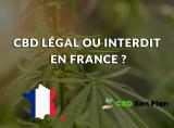 Est-ce que le CBD est légal en France ?